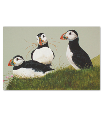 print of puffins
