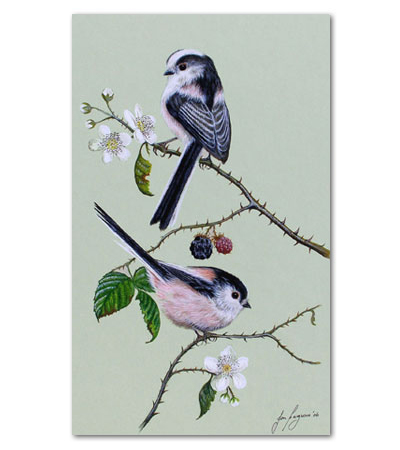 print of long tailed tits