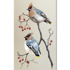 Print of waxwings
