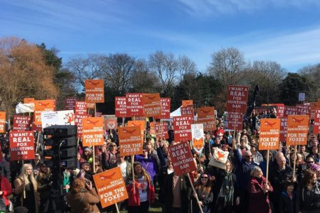 Scottish Government given huge mandate for fox hunting ban