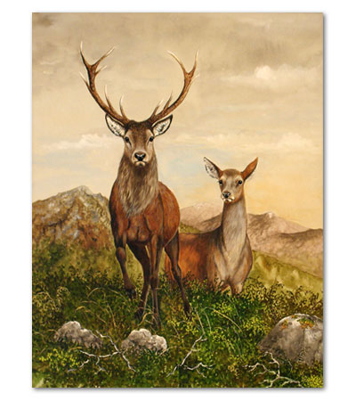 print of stag and hind