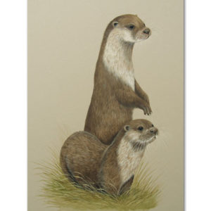 print of otters