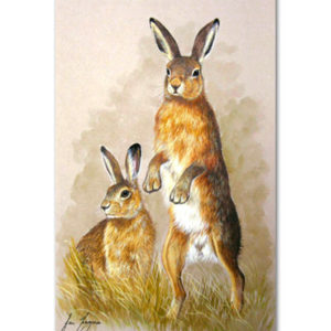 print of hares