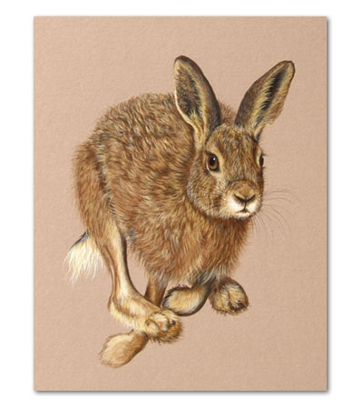 print of running hare