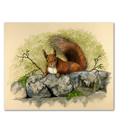 print of squirrel on wall