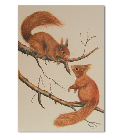 print of squirrels