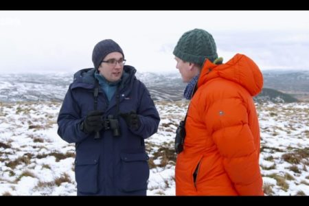 Three reflections on Countryfile's mountain hare culls feature