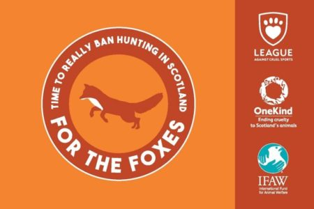 Hundreds expected to descend on Scottish Parliament this weekend to march 'For the Foxes'