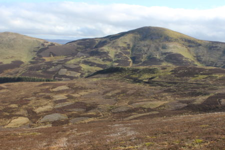 The intensive grouse moors of the Pentlands
