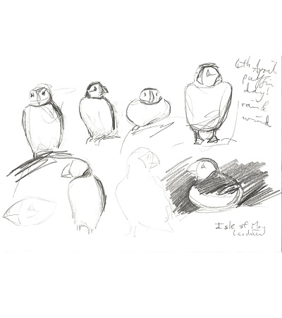 Leo du Feu, puffin day, 5.30pm, 15x21cm
