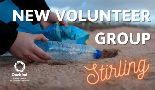 stirling volunteer group