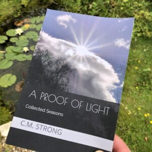 A proof of light
