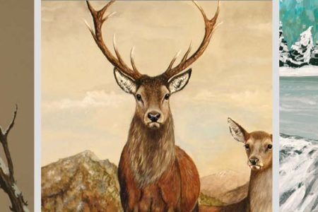 Charity invites wildlife artists to come together to help Scotland's animals