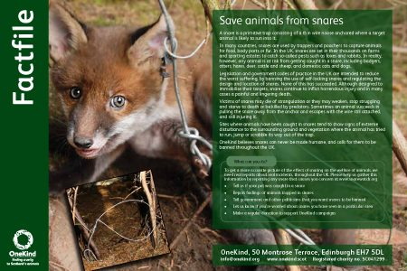 Snares factfile