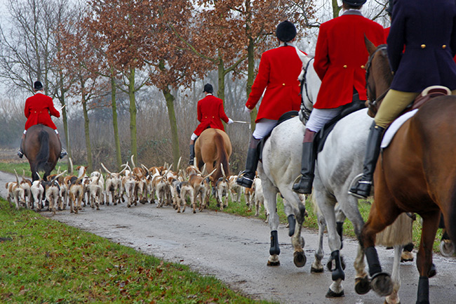 2002 – Fox hunting ban in Scotland is passed
