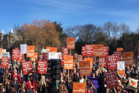 For the Foxes – reactions to our fox hunting march