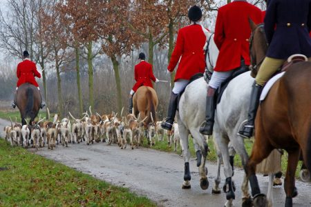 Is this how fox hunting will be banned in Scotland?