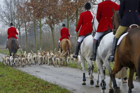Three reasons why fox hunting will be banned in Scotland for good