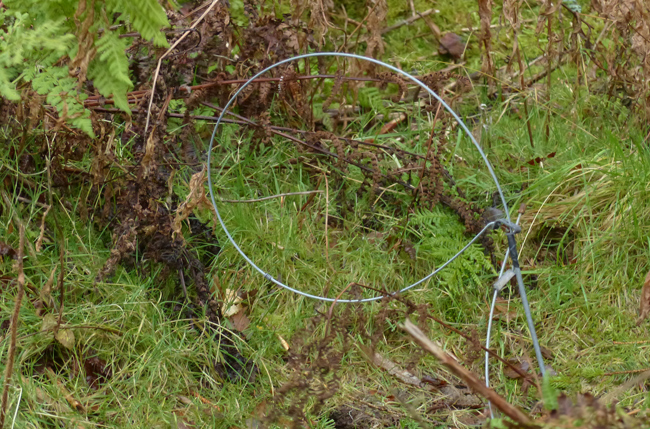 2011 – Regulations governing the setting of snares in Scotland introduced